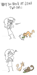 Why you Need at Least 2 Cats by sky665