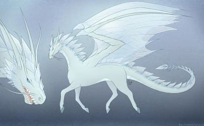 Ice dragon by SandraCharlet