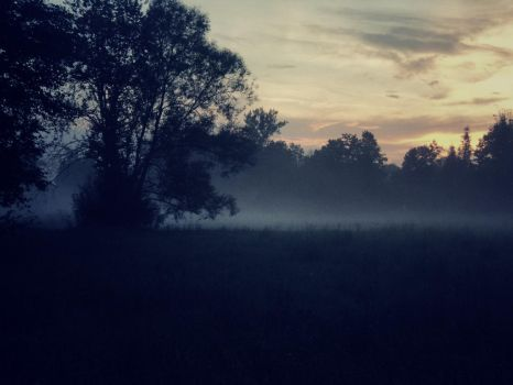 Field of cold mists by Topielica666