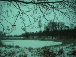 cold snowy lake by loobyloukitty