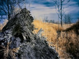Shattered and Splintered by KBeezie