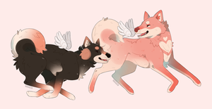 Cupid Siba Inu adoptables AUCTION CLOSED by Savkate