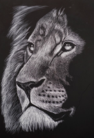 Lion by VRobson-Breault