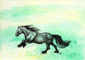 Fell Pony Watercolour by Ramelia-Images