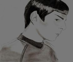 Mr.Spock by Jamin95