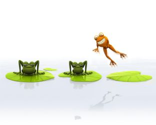 Frog by nicobou