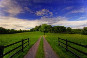 byway by photo-earth