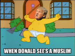 Raging Trump by Party9999999