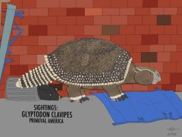 PA: GLYPTODON CLAVIPES by HUBLERDON