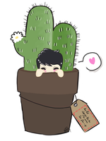 Little Cactus Phil by beginblue