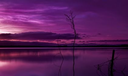A place for dreaming by GeoffSporne
