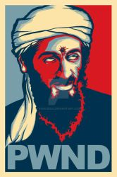 PWND Osama Bin Laden by 6amcrisis