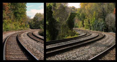 Two Tracks Diverged by FanFrye24