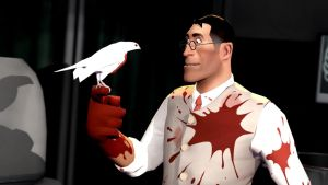 The Medic and his bird by WitchyGmod