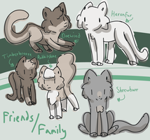Stuntcloud's Family/Friends Reference by alliemews