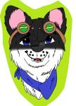 Anderson Badge by BlueBookWard