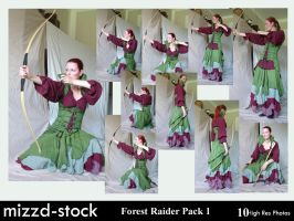 Forest Raider Pack 1 by mizzd-stock