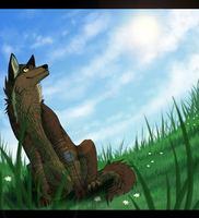 Com - Look at that beautiful sky by ReneahArt