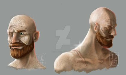 Character Concept - Ginger Elf by jgabrielgarin