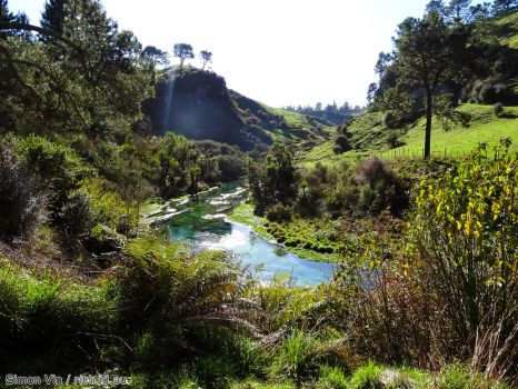 Te Waihou Blue Spring by rith-sv