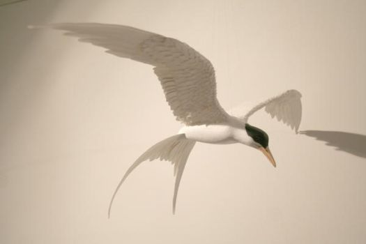 Handmade paper and wood Arctic Tern mobile by ZackMclaughlin