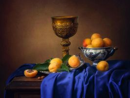 Still life with apricots by Daykiney