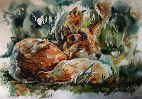 Fox, watercolor by LomovtsevaOlga