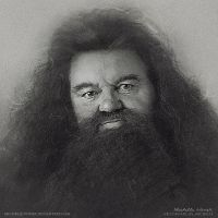 Rubeus Hagrid by Michelle-Winer