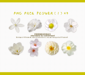 PNG PACK FLOWER 9 by Crystallanxi