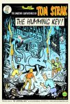 The Humming Key cover by HeinVDMArtist