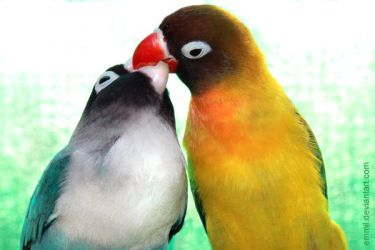 Lovers kiss by emmil