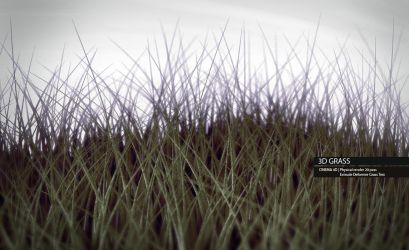 3D Grass by OrcunA
