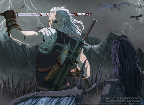 The Witcher by Lanaluu