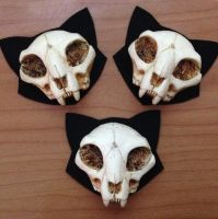 Mini Cat Skull Brooches by Bueshang