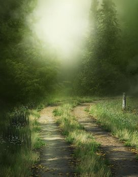Woody Path 2 background by moonchild-lj-stock