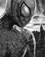 The Amazing Spider-man 2 by Wanted75