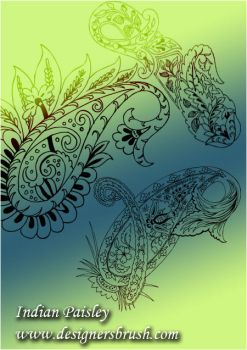 Indian paisley by designersbrush