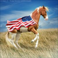 HEE Horse Avatar - Independence by Art-Equine