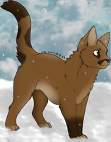 Cougarpelt by Harryn53012