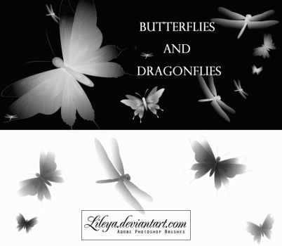 Butterflies and Dragonflies by Lileya