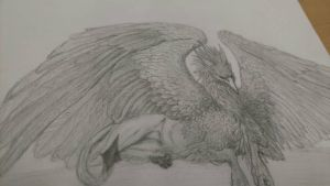 Matthew's Griffin by lmoonga