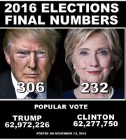 Trump Won the popular vote too by Novuso