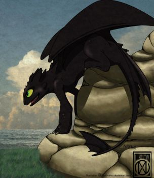 Toothless by Illustriation