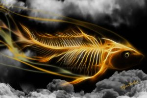 Flying Fish by Tyleen-Barker