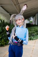 Judy Hopps Cosplay by raveka