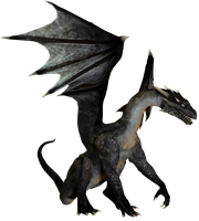 E-S Dragon I Darkness by Elevit-Stock