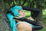 Miku Append by Wendyland