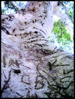 Signature Tree by x-louisee-richo-x