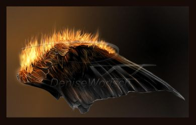 2015bmwings by DeniseWorisch