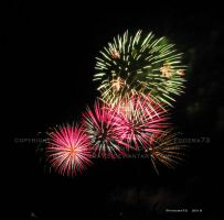 July 4 2010 part 2 by Foozma73